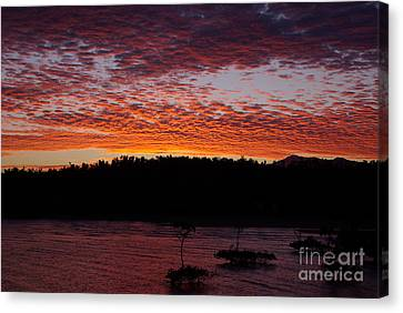Canvas Print featuring the photograph Four Elements Sunset Sequence 2 Coconuts Qld by Kerryn Madsen - Pietsch