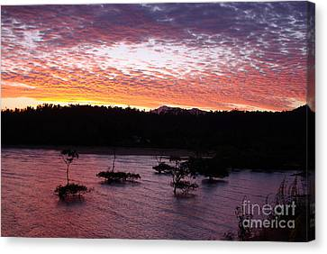 Canvas Print featuring the photograph Four Elements Sunset Sequence 3 Coconuts Qld by Kerryn Madsen - Pietsch