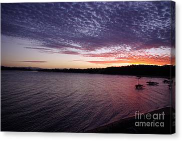 Canvas Print featuring the photograph Four Elements Sunset Sequence 4 Coconuts Qld  by Kerryn Madsen- Pietsch