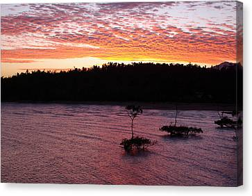 Canvas Print featuring the photograph Four Elements Sunset Sequence 5 Coconuts Qld  by Kerryn Madsen - Pietsch