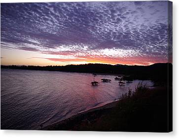 Canvas Print featuring the photograph Four Elements Sunset Sequence 6 Coconuts Qld  by Kerryn Madsen-Pietsch