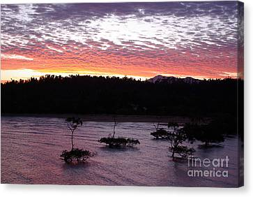 Canvas Print featuring the photograph Four Elements Sunset Sequence 8 Coconuts Qld  by Kerryn Madsen - Pietsch