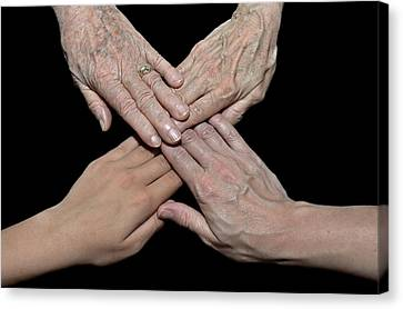 Four Generations Canvas Print by Maria Dryfhout