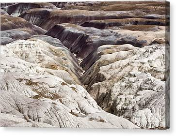Four Million Geologic Years Canvas Print by Melany Sarafis