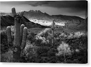 Four Peaks Az Sunset Canvas Print by Dave Dilli