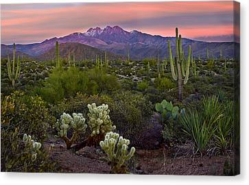 Snow-covered Landscape Canvas Print - Four Peaks Sunset by Dave Dilli