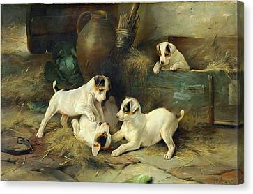 Dog At Play Canvas Print - Four Puppies At Play by MotionAge Designs