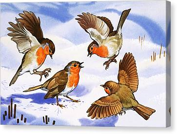 Four Robins In The Snow Canvas Print by English School