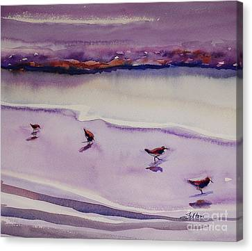 Four Sandpipers Canvas Print