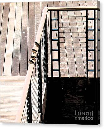 Four Swallows Canvas Print by Gary Everson