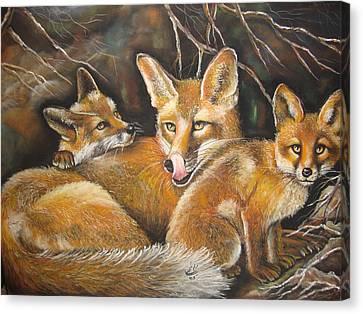 Fox And Kits Canvas Print by Maryam Shakeri