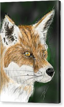 Canvas Print featuring the digital art Fox by Darren Cannell