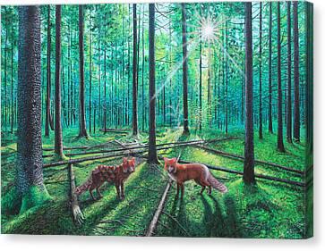 Fox Hollow Canvas Print by Vincent Fink