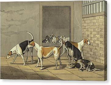 Breed Of Dog Canvas Print - Fox Hounds by Henry Thomas Alken