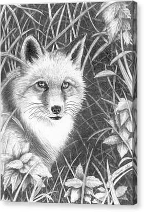 Fox Canvas Print by Lawrence Tripoli