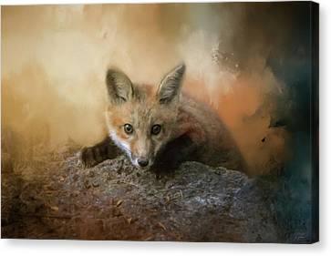 Fox Kit Canvas Print - Fox On The Rocks by Jai Johnson