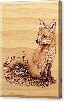 Fox Pup Canvas Print by Ron Haist