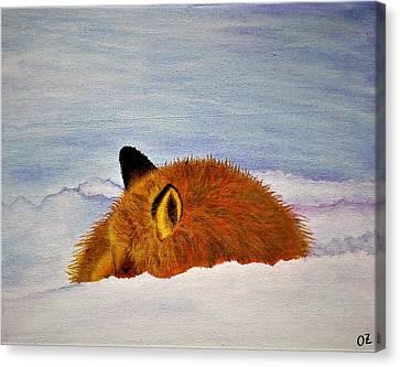 Fox Sleeping In Snow Canvas Print