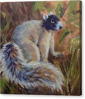 Fox Squirrel Canvas Print