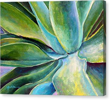 Fox Tail Agave 1 Canvas Print by Athena  Mantle