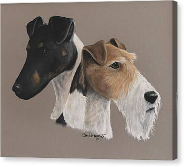 Fox Terrier Canvas Print - Fox Terrier by Daniele Trottier