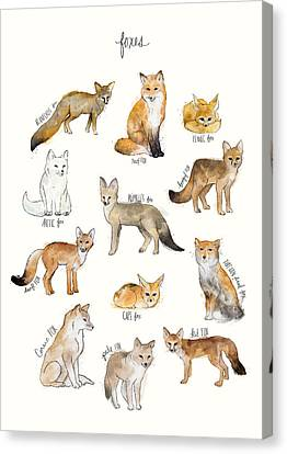Foxes Canvas Print by Amy Hamilton