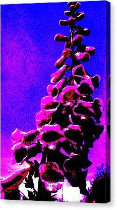 Canvas Print featuring the painting Foxglove by Renate Nadi Wesley