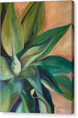 Foxtail Agave 4 Canvas Print by Athena  Mantle