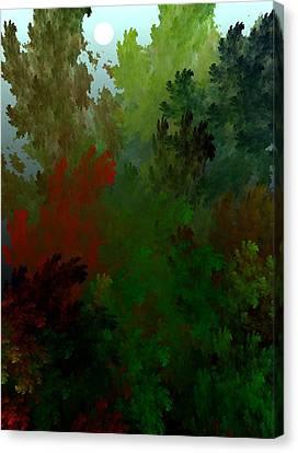Fractal Landscape 11-21-09 Canvas Print by David Lane