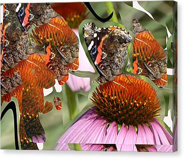 Fractured Butterfly Canvas Print by Linda Dunn