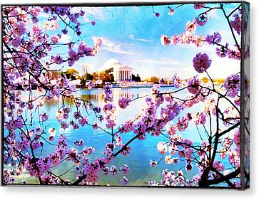 Canvas Print featuring the photograph Framed  by Edward Kreis