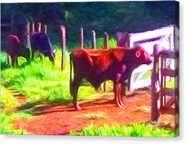 Franca Cattle 2 Canvas Print by Caito Junqueira