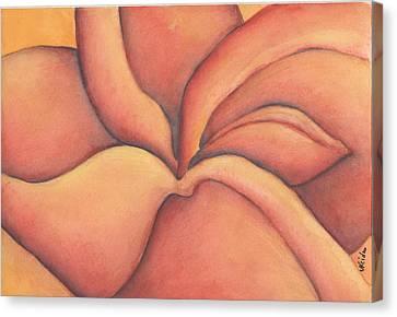 Frangipani Canvas Print