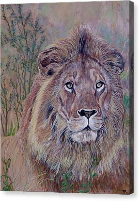 Canvas Print featuring the painting Frank by Tom Roderick