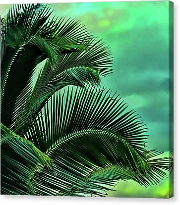 Frawns Canvas Print