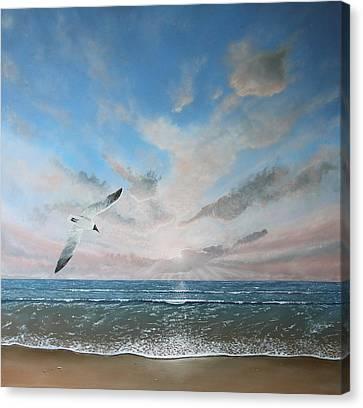 Free As A Bird Canvas Print by Paul Newcastle