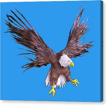 Free Bird Canvas Print by Dan Townsend