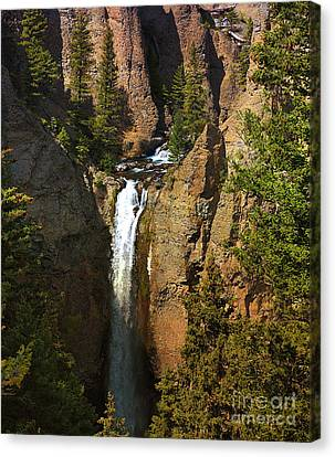 Canvas Print featuring the photograph Free Fall by Robert Pearson