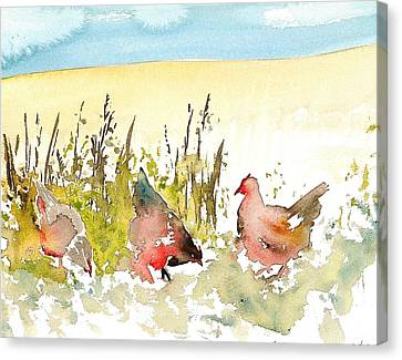 Free Range Canvas Print by Carolyn Doe