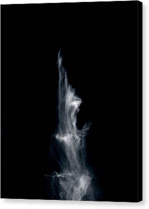 Canvas Print featuring the photograph Freed Soul by Maggy Marsh