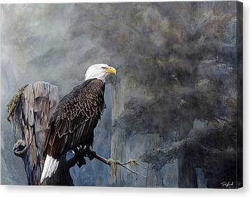 Freedom Haze Canvas Print by Steve Goad