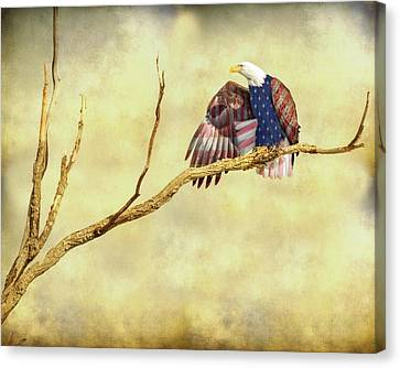 Canvas Print featuring the photograph Freedom by James BO Insogna
