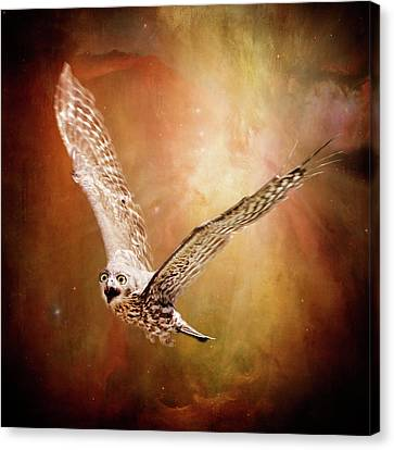 Freedom Canvas Print by Margaret Goodwin