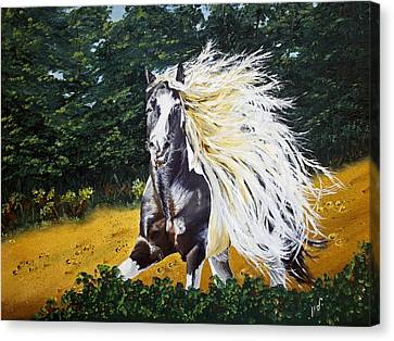 Forelock Canvas Print - Freedom by Maria Woithofer