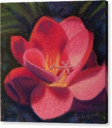 Freesia Dawn Canvas Print