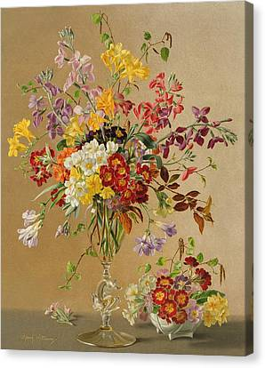 Freesias And Primroses Canvas Print by Albert Williams