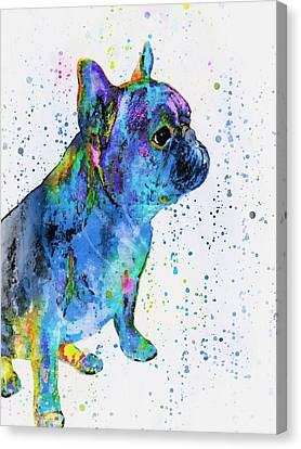 French Bulldog In Art Canvas Print