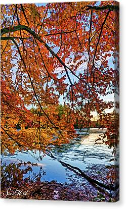 French Creek 15-110 Canvas Print by Scott McAllister