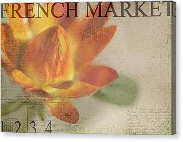French Market Series J Canvas Print by Rebecca Cozart