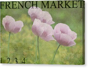 French Market Series P Canvas Print by Rebecca Cozart